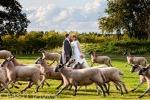 bestweddingphotography25