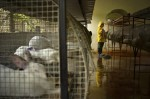 prison12.sJPG_950_2000_0_75_0_50_50