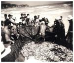 fish-net-thong