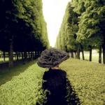 rodneysmith1 nice hat