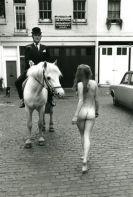 horse_nude