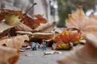 Dead+Leaves+1+-+blog