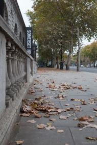 Dead+Leaves+2+-+blog