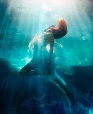 Michael-David-Adams-underwater12