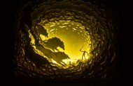 Paper-Cut-Light-Boxes-by-Hari-Deepti-1-600x393