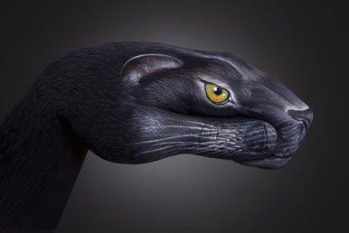 Panther1-507x340